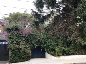 """Las pruebas del hallazgo del nuevo centro clandestino """"El Jardín"""", su vinculación con """"Orletti"""" y el Plan Cóndor"""