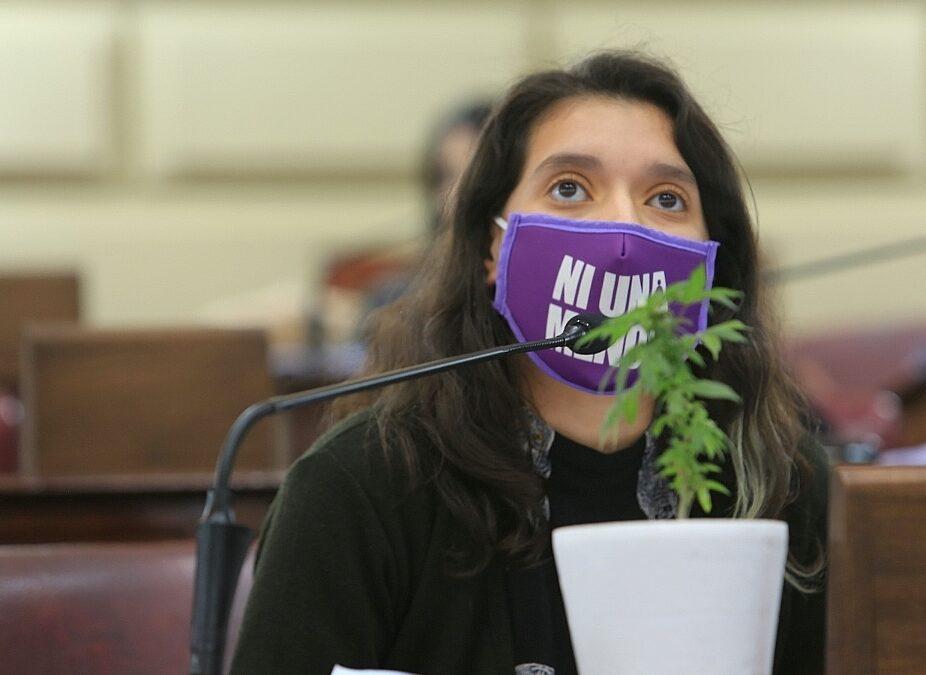 Santa Fe: piden que el Senado trate el autocultivo de cannabis para uso medicinal