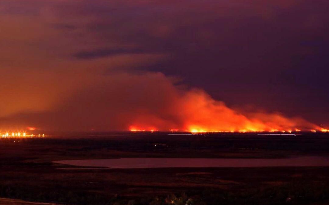 Delta del Paraná: hay 60 imputados por los incendios en los humedales